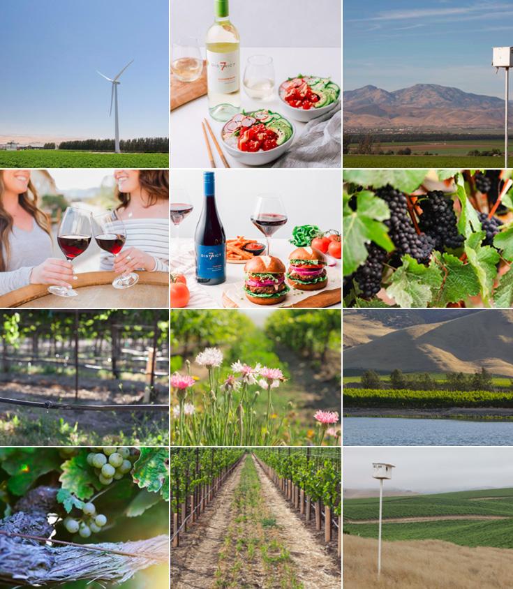 district7 ワイン
