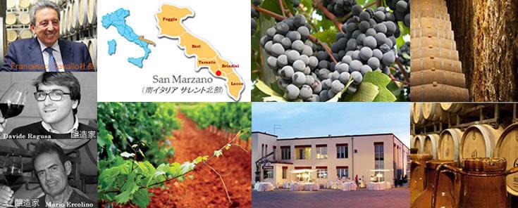 サン・マルツァーノ ワイン