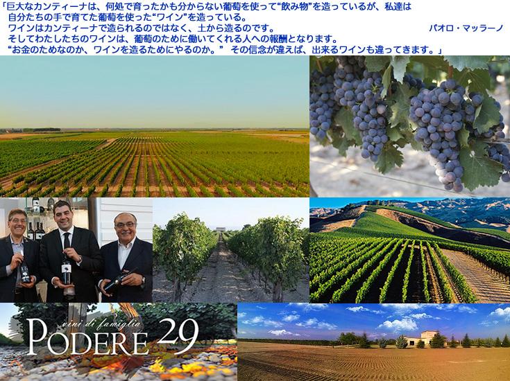 ポデーレ29 ユニオ(赤) ワイン