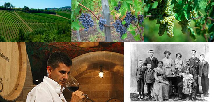 マストロベラルディーノ タウラージ ラディーチ(赤) ワイン