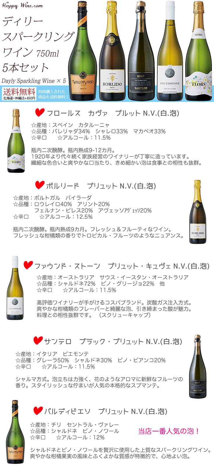 【送料無料】デイリー・スパークリングワイン 750ml×5本セット (北海道・沖縄は送料480円注文後に追加)